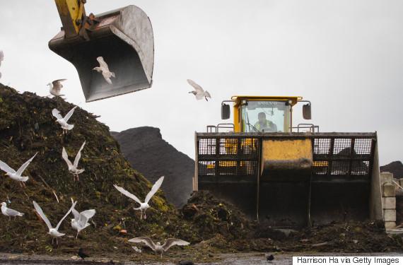 food waste canada