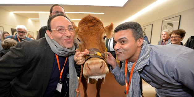 Belgian and Israeli author and cartoonist Michel Kichka (L) and Moroccan cartoonist Khalid Gueddar pose with Limousin cow 'Justine' they received after being awarded with the 'Humour Vache' prize at the 35th International Caricature and Press Comic festival in Saint-Just Le Martel, central France, on October 8, 2016.   / AFP / PASCAL LACHENAUD        (Photo credit should read PASCAL LACHENAUD/AFP/Getty Images)