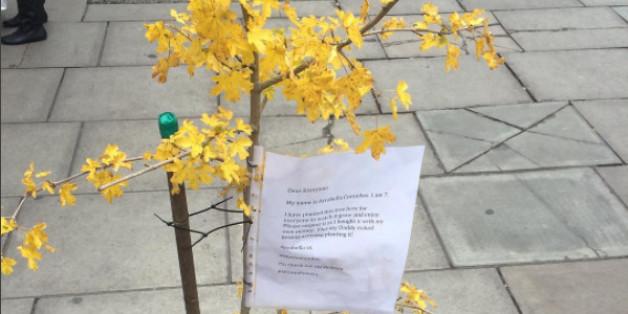 Baum in der Oxford Street/London (credit: @smythmr/Instagram)