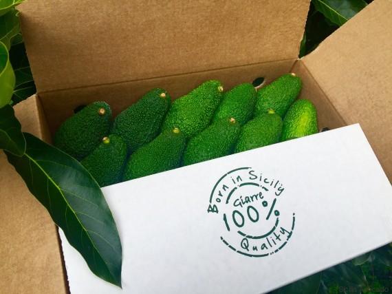 sicilia avocado 1