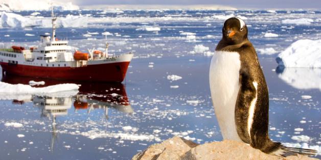 Das Rossmeer solle eine riesige Meeresschutzzone werden