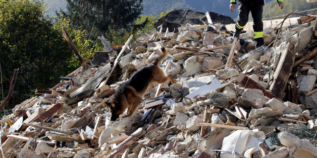 A firefighter with a rescue dog search a collapsed building after an earthquake in Borgo Sant'Antonio near Visso, central Italy, October 27, 2016. REUTERS/Max Rossi