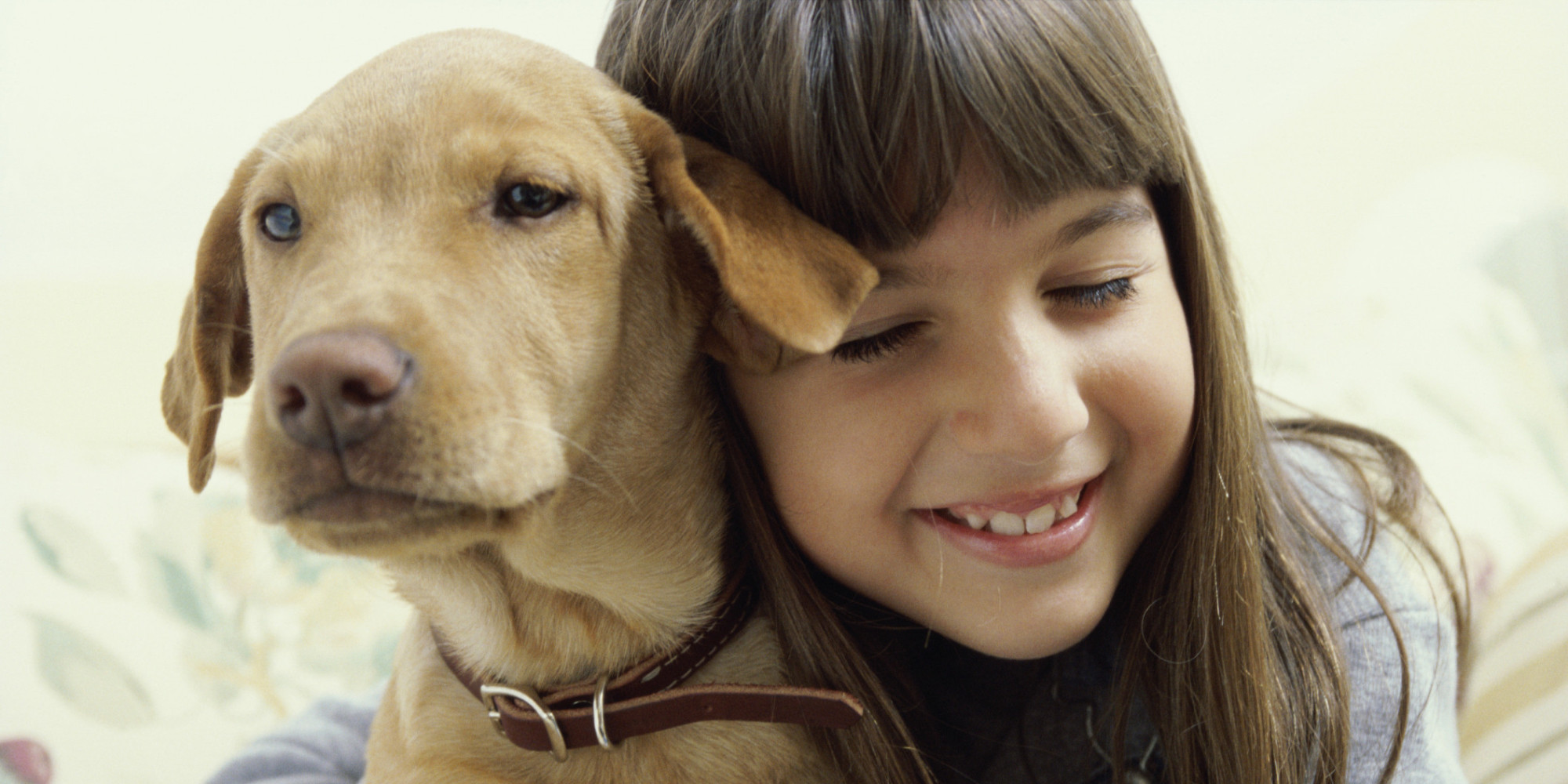 animal and child behaviour