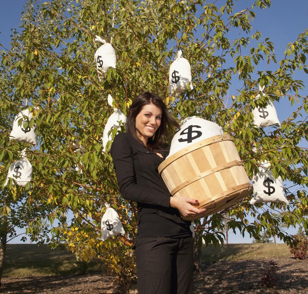 bag of money tree