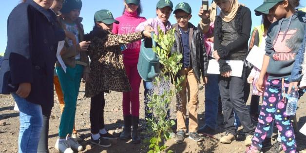 Le Maroc plante 1 million d'arbres en une seule journée