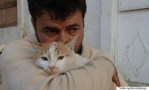 il gattaro aleppo
