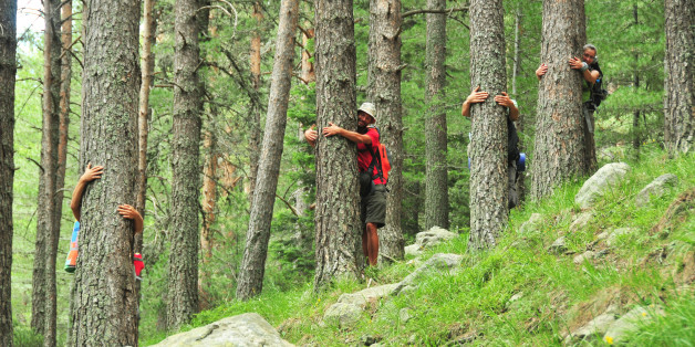 Tree hugging in Rila National Park, Bulgaria.