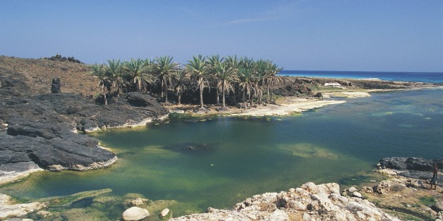 YEMEN - FEBRUARY 9: Palm trees on rocky cove along the Arabian Sea coast, near Hadibu, Socotra island, Yemen. (Photo by DeAgostini/Getty Images)