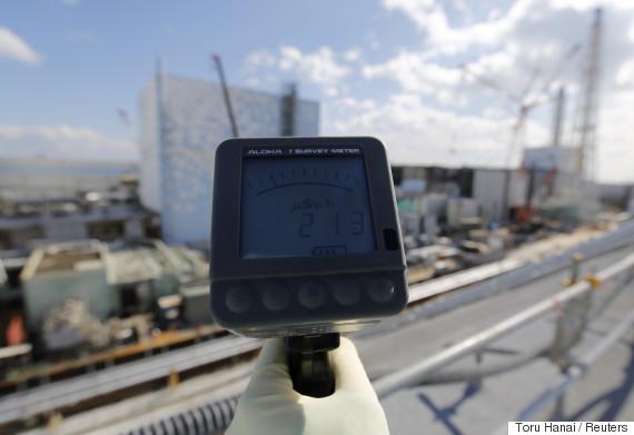 fukushima nuclear
