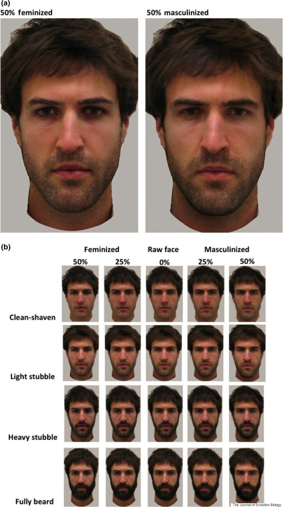 men with beards more attractive