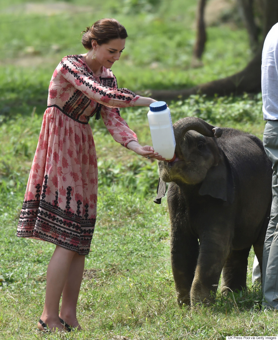duchess of cambridge kaziranga national park