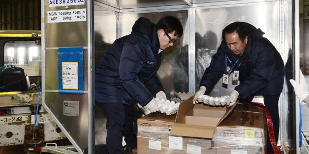 농림축산검역본부 관계자들이 12일 오후 인천공항 아시아나항공 화물터미널에서 미국으로부터 수입된 샘플용 달걀을 검역하고 있다. 이어 오는 14일과 15일 양일간 네 차례에 걸쳐 국내 3개 유통업체가 미국에서 수입한 신선 달걀 400t이 인천 공항에 도착한다.