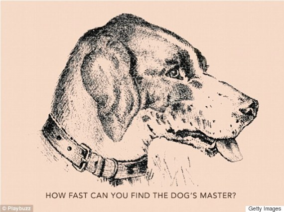 hund raetsel