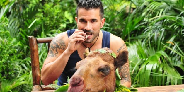 Marc Terenzi ist der Dschungelkönig. Alle Infos zu 'Ich bin ein Star - Holt mich hier raus!' im Special bei RTL.de: www.rtl.de/cms/sendungen/ich-bin-ein-star.html