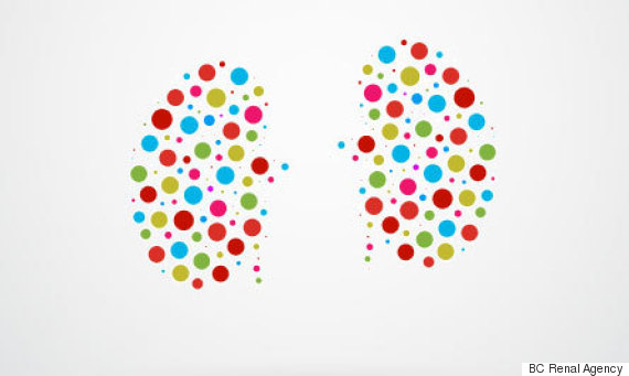 kidney dots