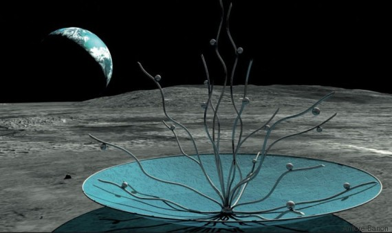 vitae moon