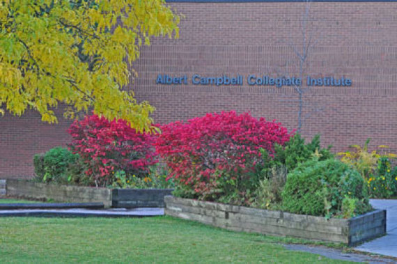 albert campbell collegiate institute