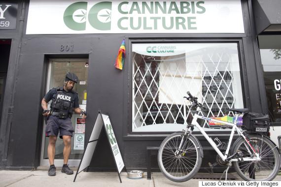 marijuana raid canada