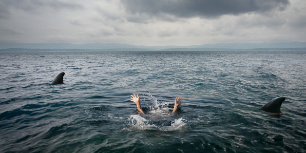 woman is assaulted by a shark in a deep ocean