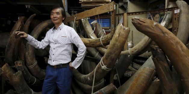 China verbannt Elfenbein aus Geschäften und Fabriken