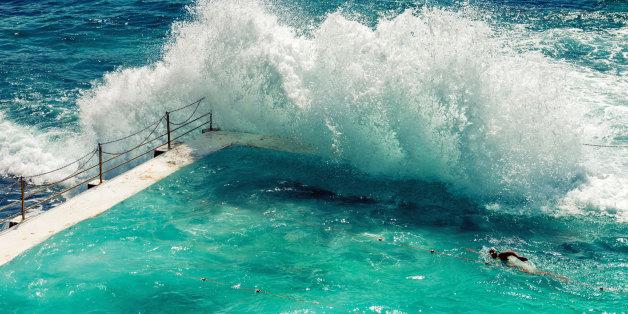 Alarm in Sydney: Flut spült Meeresraubtier in einen Swimmingpool