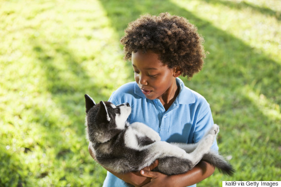 black kid with dog