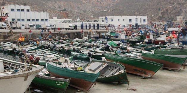 """Al Hoceima: Les pêcheurs reprennent leur activité après la perte de leurs filets à cause des """"dauphins noirs"""""""