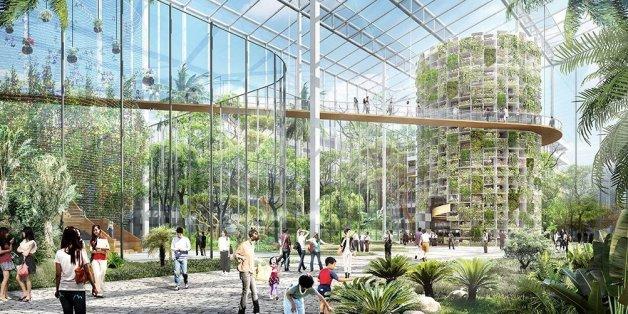 Architekten wollen mitten in Shanghai Grünkohl anbauen und Fische züchten