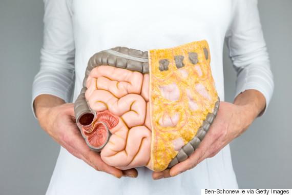 bloating gut