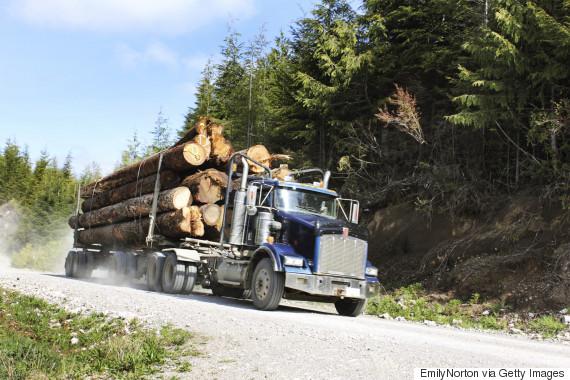 lumber canada