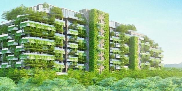 """Der """"Forest in the Sky"""" ist mit mehr als 50.000 Bäumen bepflanzt."""