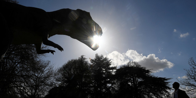 A man views an animatronic life-size dinosaur ahead of an interactive exhibition, Jurassic Kingdom, at Osterley Park in west London, Britain, March 31, 2017. REUTERS/Toby Melville