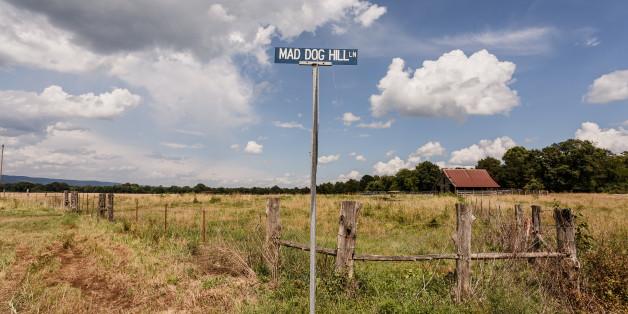 Street sign for Mad Dog Hill Lane. June 26, 2015. Bluffton Arkansas.