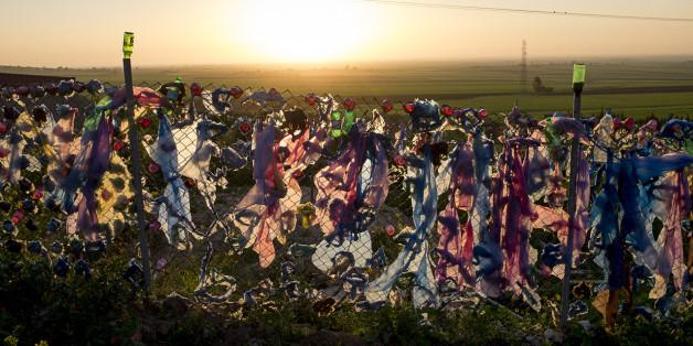 Le projet international Footprint Zéro explore les préoccupations sur la destruction de l'environnement.
