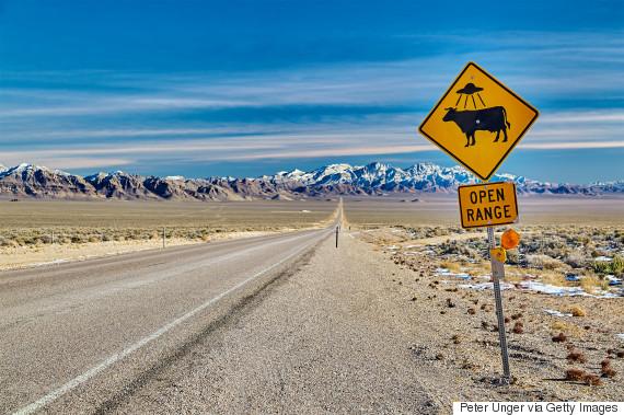 cattle ufo