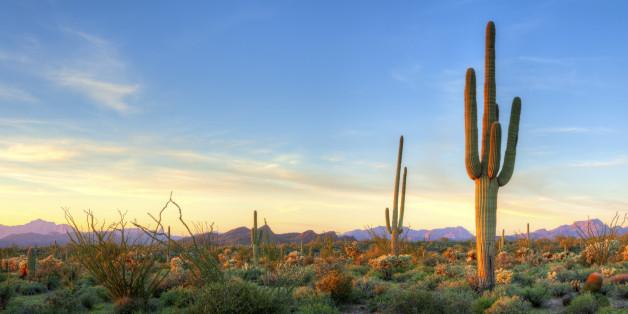 Die Sommerhitze hat in Arizona mittlerweile 48 Grad erreicht.