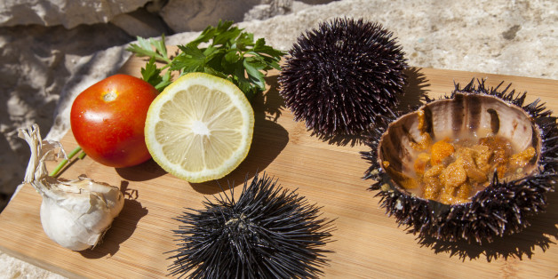 Fresh Sea Urchin served with mediterranean lemon, tomatoes, garlic, parsley, on wooden plate in stone house exterior, space for text