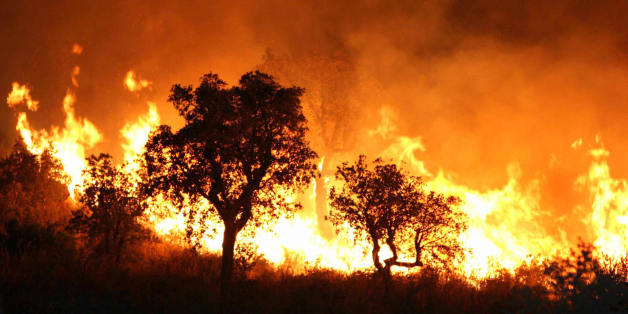 A fire burns late 01 September 2007 night in Tzarift, near Tlemcen, north-west of Algeria. Cooler temperatures in northern Algeria helped firefighters put out most of the blazes that have killed at least eight people and ravaged huge swathes of forest over the past 48 hours. AFP PHOTO STR (Photo credit should read STR/AFP/Getty Images)