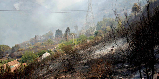 Trees and bushes burn around the village of Chrea, in the Blida Wilaya (district), some 50 kilometers from the capital city Algiers, 29 August 2007, as local authorities have decided to evacuate two villages in the area which were threatened by forest fire.            AFP    PHOTO    STR (Photo credit should read STR/AFP/Getty Images)