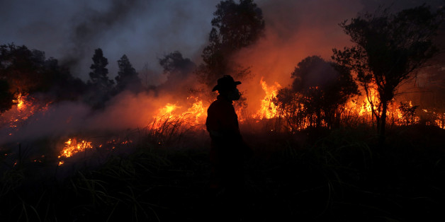 A firefighter tries to extinguish a bush fire in Ogan Ilir regency, South Sumatra, Indonesia August 4, 2017 in this photo taken by Antara Foto. Picture taken August 4, 2017. Antara Foto/Nova Wahyudi/ via REUTERS  ATTENTION EDITORS - THIS IMAGE WAS PROVIDED BY A THIRD PARTY. MANDATORY CREDIT. INDONESIA OUT. NO COMMERCIAL OR EDITORIAL SALES IN INDONESIA.