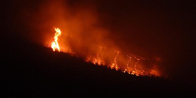 Pour le moment, 4 hectares et demi ont été ravagés