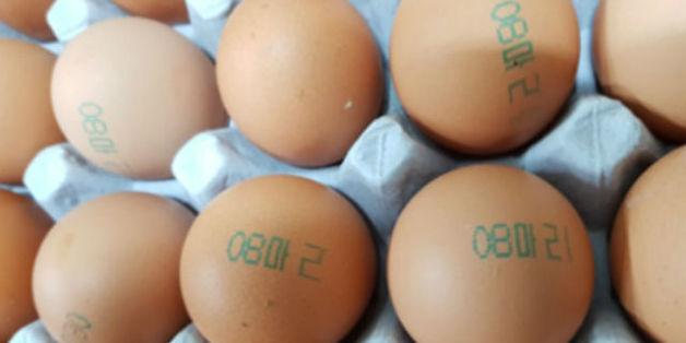 닭에는 사용할 수 없는 살충제인 피프로닐이 검출된 마리 농장의 달걀 껍데기에는 '08 마리'가 찍혀 있다. 식품의약품안전처 제공