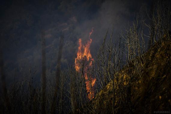 fire ileia2