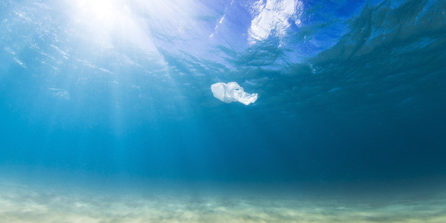 A plastic bag drifts in the clear blue ocean on a sunny day as a result of human pollution. Perfect for ocean conservation theme. (This bag was collected and taken out of the ocean)