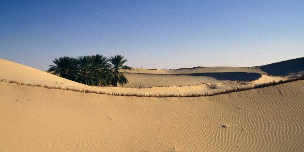 ALGERIA - MAY 11: Oasis near El Oued, Sahara Desert, Algeria. (Photo by DeAgostini/Getty Images)