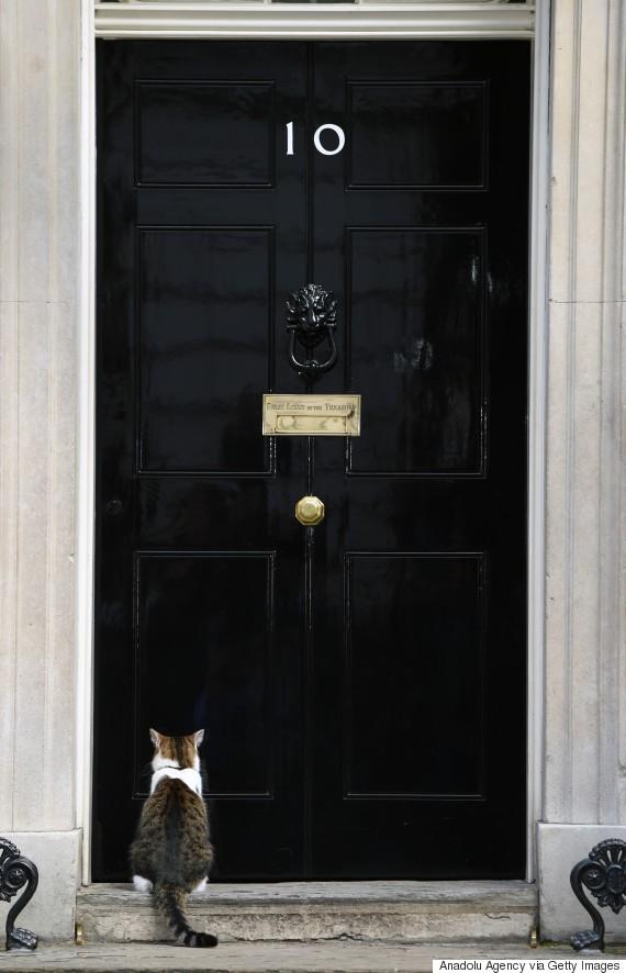 larry london cameron