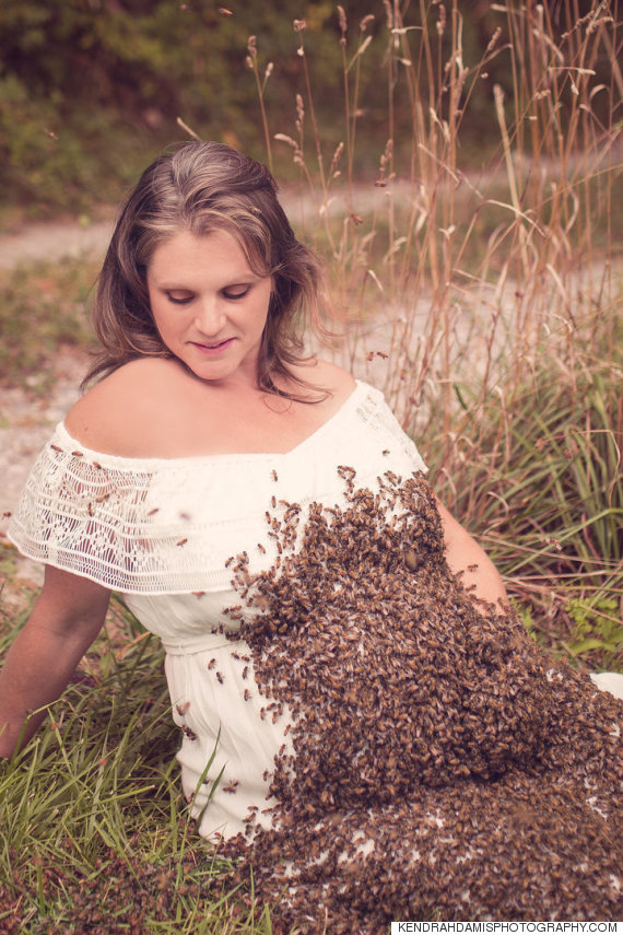 femme enceinte abeille