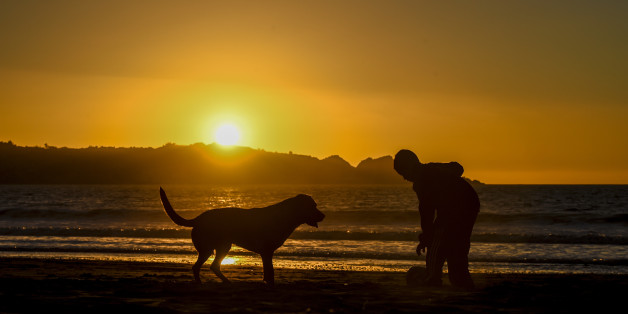 A boy plays with his dog at sunset in La Serena, about 450 km north of Santiago, on September 3, 2017. 