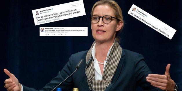 """""""Höcke rechts überholt"""": Politiker und Medien sind schockiert von Weidels angeblicher E-Mail"""
