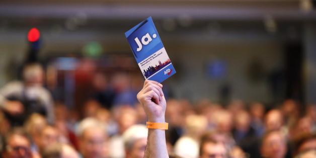 Der AfD-Effekt: Stärkt oder schwächt eine höhere Wahlbeteiligung Rechtsradikale? Das sagen Experten